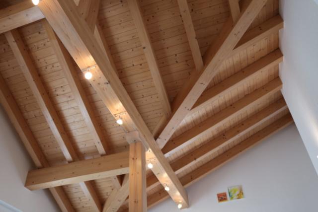 close-up ceiling
